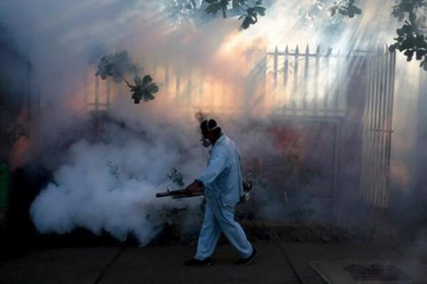 Những bức ảnh khiến bạn ám ảnh về dịch bệnh 'Zika đầu nhỏ' - ảnh 9