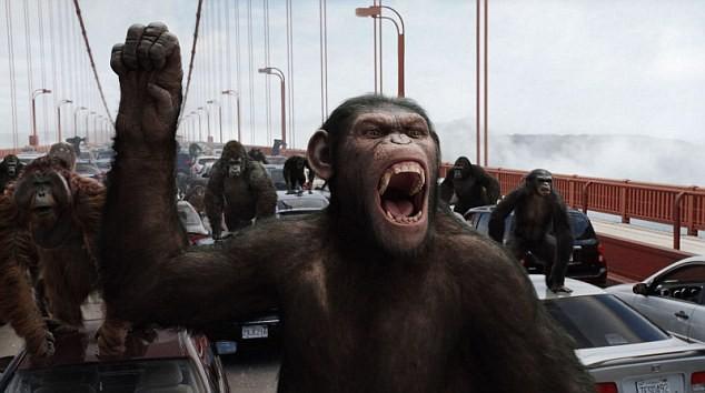 Nếu loài người tuyệt chủng, sinh vật nào sẽ thống trị Trái đất? - ảnh 1