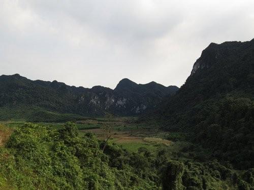 Việt Nam được chọn để quay 'King Kong 2' - ảnh 1