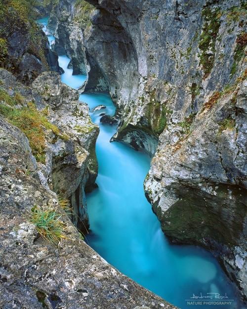 Kỳ lạ dòng sông nước xanh như ngọc bích chảy quanh năm - ảnh 1