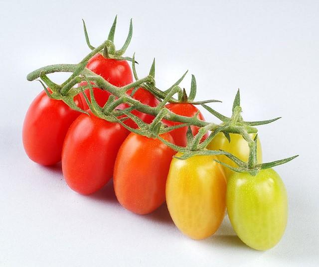 Những người dù có chết thèm cũng phải nói KHÔNG với cà chua - ảnh 2
