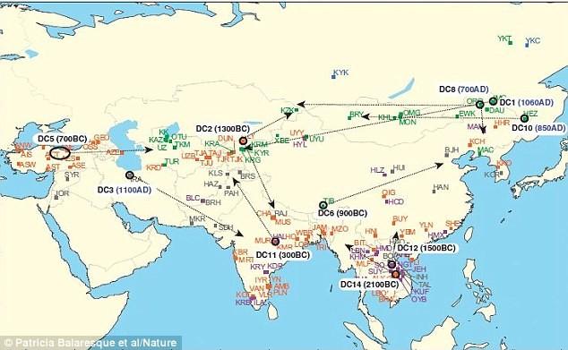 Cụ tổ bí ẩn của 830 triệu đàn ông châu Á là ai? - ảnh 2