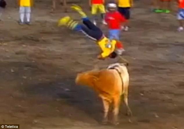 Clip: Kinh hoàng cảnh đấu sĩ bị bò tót hất tung lên trời như đồ chơi - ảnh 1