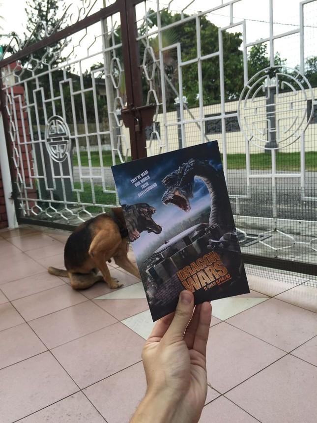 Những màn kết hợp 'bá đạo' giữa chó và… poster phim - ảnh 6