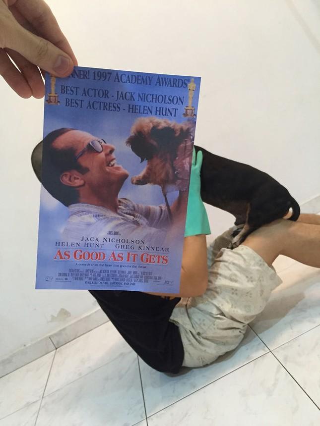 Những màn kết hợp 'bá đạo' giữa chó và… poster phim - ảnh 8