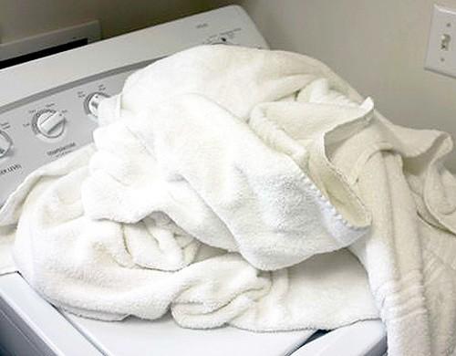 Hiểm họa khôn lường từ khăn tắm bẩn - ảnh 3