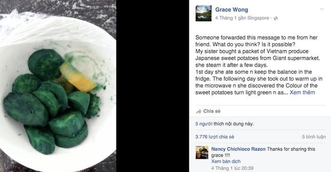 Thông tin sai lệch vụ khoai lang Việt nhiễm dioxin - ảnh 1