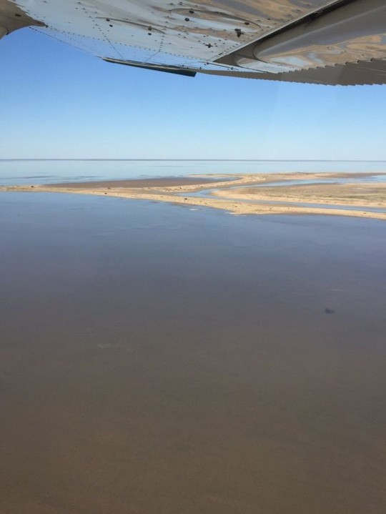 Kỳ lạ hồ sa mạc bỗng dưng đầy nước ở Australia - ảnh 2