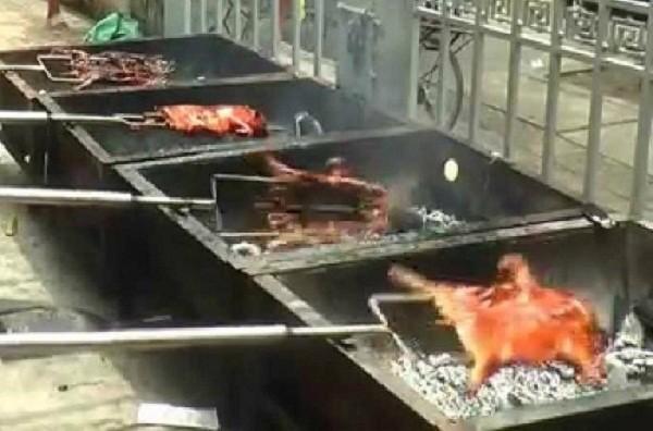 Cẩn thận: Lợn sữa bệnh 'biến' thành đặc sản - ảnh 2