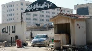 IS ồ ạt di tản tránh không kích của liên quân Mỹ - ảnh 1