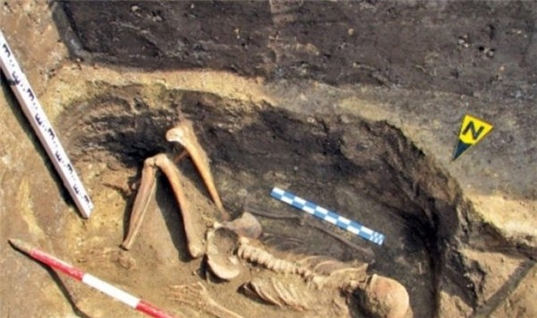 Bộ xương người khổng lồ năm 1976 thuộc về nền văn minh xa xưa? - ảnh 4