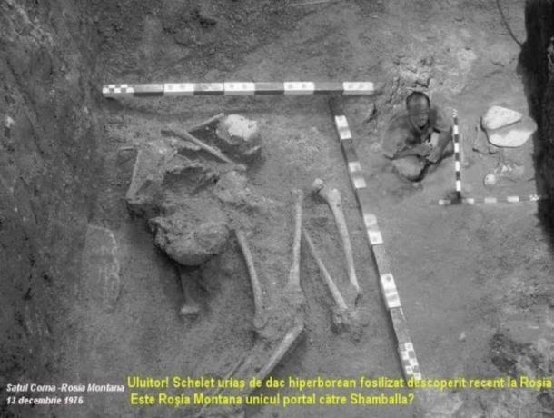 Bộ xương người khổng lồ năm 1976 thuộc về nền văn minh xa xưa? - ảnh 3