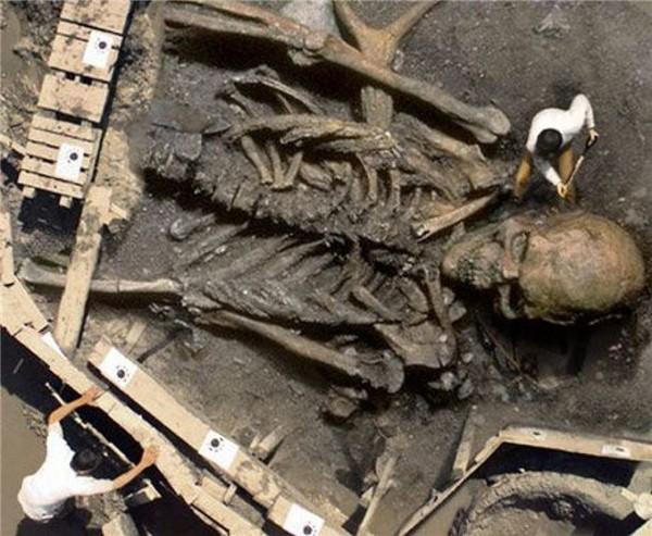 Bộ xương người khổng lồ năm 1976 thuộc về nền văn minh xa xưa? - ảnh 1