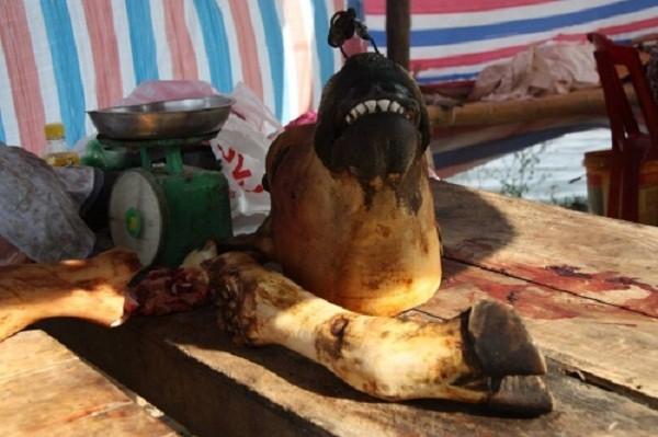 Chợ Viềng: Đầu bê trưng đầy, thịt bê đắt đỏ - ảnh 1