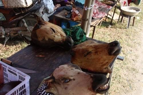 Chợ Viềng: Đầu bê trưng đầy, thịt bê đắt đỏ - ảnh 3