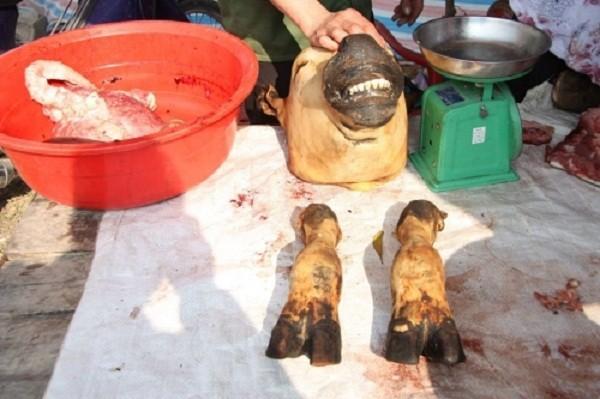 Chợ Viềng: Đầu bê trưng đầy, thịt bê đắt đỏ - ảnh 4