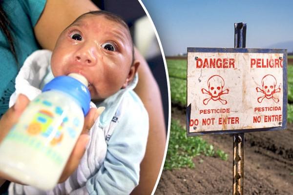 9.500kg hóa chất nghi gây teo não ở trẻ đã nhập về Việt Nam - ảnh 2