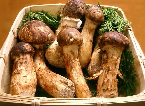 6 loại thực phẩm đắt nhất Nhật Bản - ảnh 4