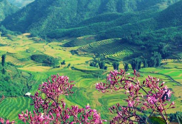 8 thung lũng 'vạn người mê' thích hợp cho chuyến du xuân đầu năm - ảnh 4