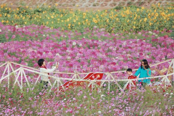 8 thung lũng 'vạn người mê' thích hợp cho chuyến du xuân đầu năm - ảnh 6