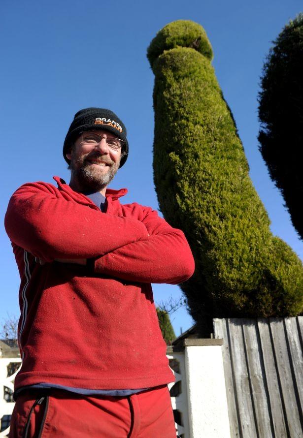 Tỉa cây hình 'của quý' 3 năm ròng rã chỉ để hàng xóm... vui - ảnh 1