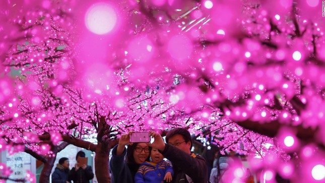 Người châu Á mừng Tết cổ truyền Bính Thân 2016 - ảnh 6