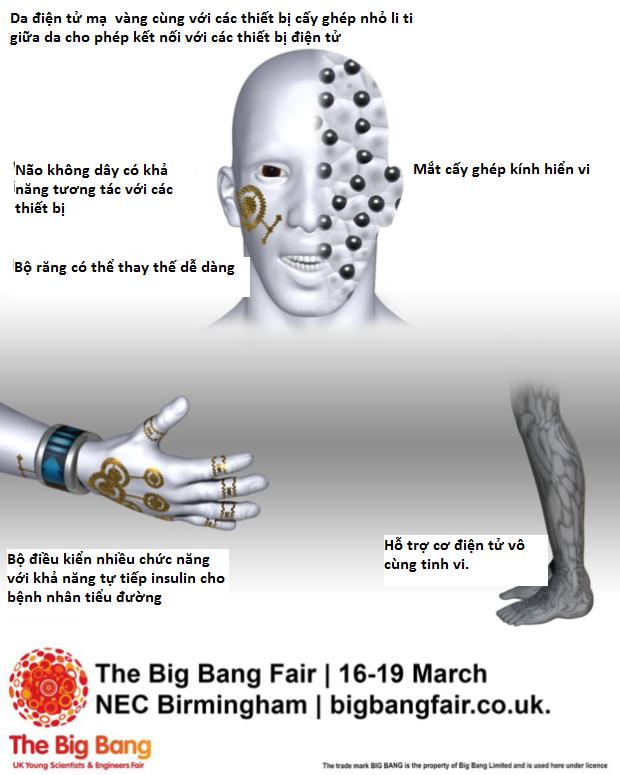 Tiếp theo, loài người sẽ tiến hóa thành Cyborg bất tử - ảnh 2