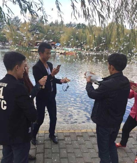 Bị du khách Trung Quốc bắt chụp hình, 2 con công sốc tới chết - ảnh 4
