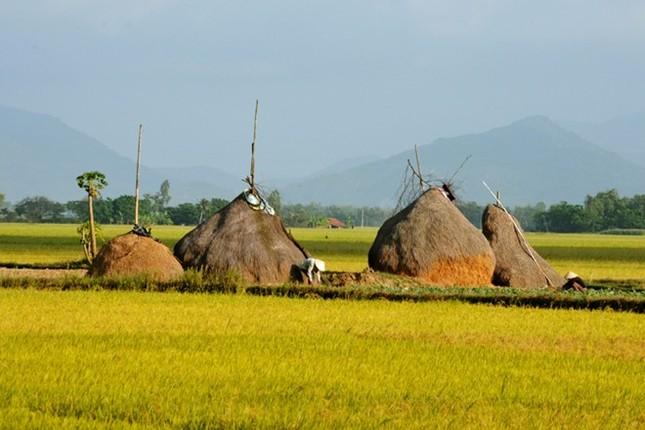 9 điểm đến đẹp mê hồn không thể bỏ qua trong tháng 3 ở Việt Nam - ảnh 4