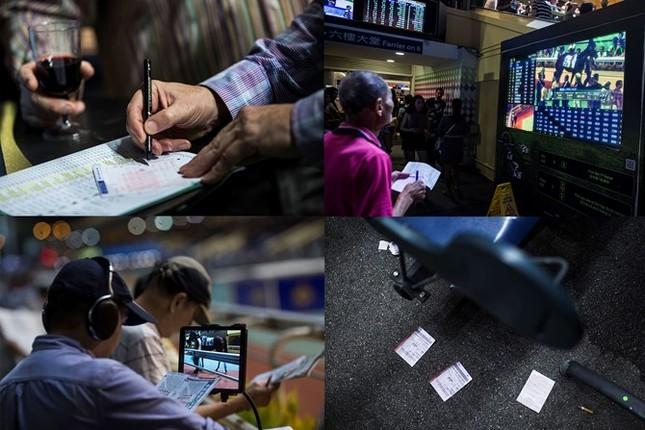 Khám phá ngành kinh doanh đua ngựa tỷ đô ở Hong Kong - ảnh 11