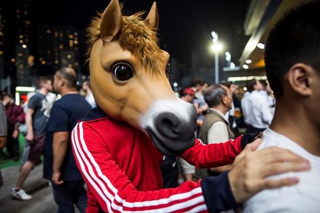 Khám phá ngành kinh doanh đua ngựa tỷ đô ở Hong Kong - ảnh 12