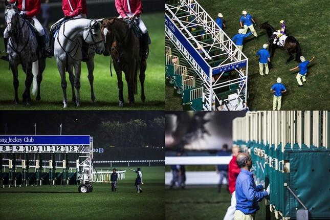 Khám phá ngành kinh doanh đua ngựa tỷ đô ở Hong Kong - ảnh 13