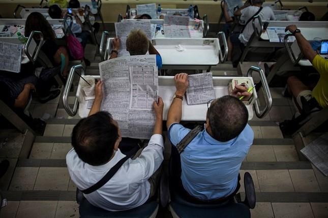 Khám phá ngành kinh doanh đua ngựa tỷ đô ở Hong Kong - ảnh 14