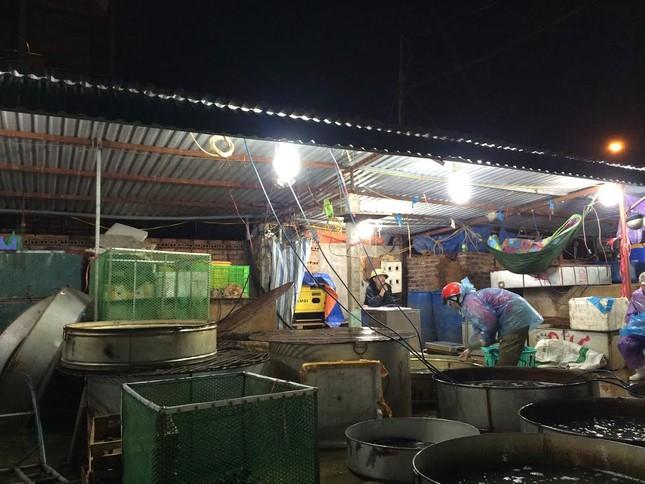 Chợ bí ẩn nhất Hà Nội: Bán gà không kêu, mổ cá không tanh - ảnh 1