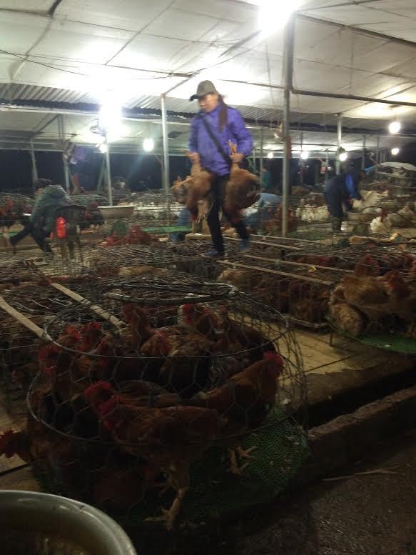 Chợ bí ẩn nhất Hà Nội: Bán gà không kêu, mổ cá không tanh - ảnh 2