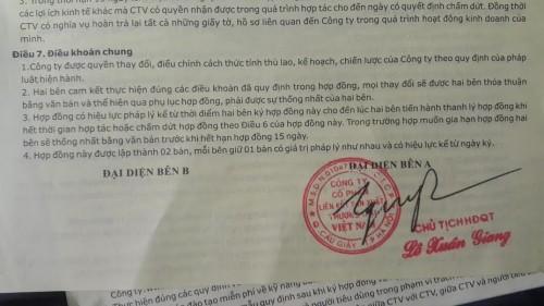 Nạn nhân của Liên kết Việt: 'Tôi đã lừa đảo cả đứa con tàn tật' - ảnh 3