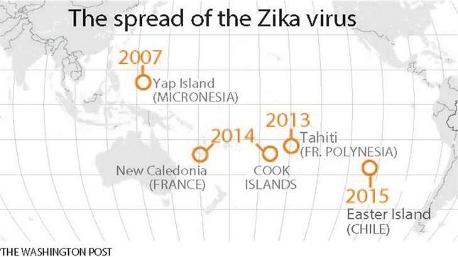 Những điều cần biết về virus 'ăn não' Zika đang lan ra toàn cầu - ảnh 7