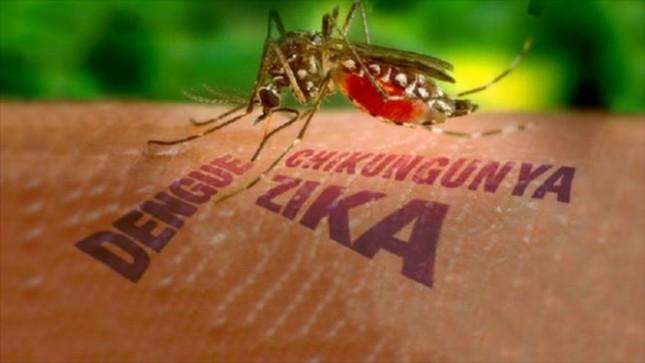 Mỹ xác nhận trường hợp đầu tiên nhiễm Zika qua đường tình dục - ảnh 2