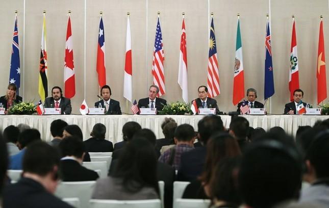 Hiệp định TPP được ký kết thành công - ảnh 1