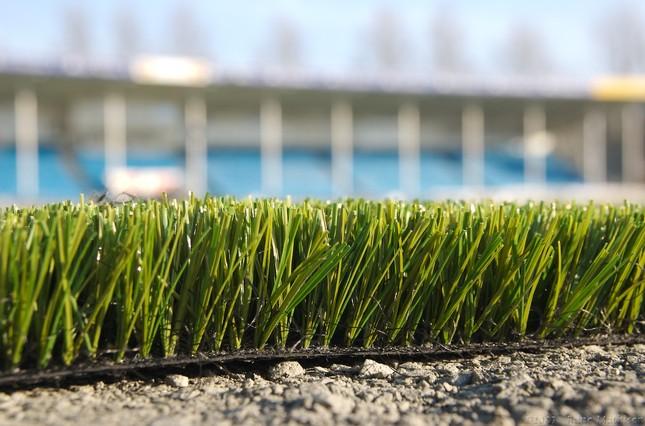 Sự thật về việc chơi bóng trên sân cỏ nhân tạo bị ung thư - ảnh 2