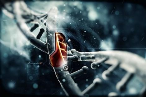 Khoa học thế kỷ 21: Những bí ẩn còn sót lại - ảnh 3