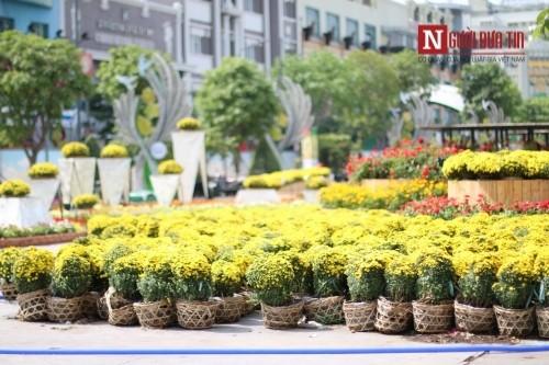 Đường hoa Nguyễn Huệ ngập tràn sắc xuân ngày khai hội - ảnh 10