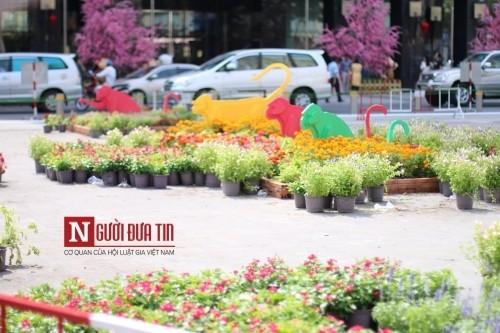 Đường hoa Nguyễn Huệ ngập tràn sắc xuân ngày khai hội - ảnh 15