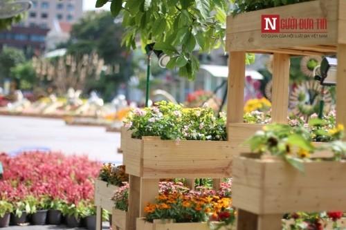 Đường hoa Nguyễn Huệ ngập tràn sắc xuân ngày khai hội - ảnh 19