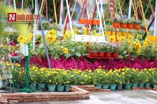 Đường hoa Nguyễn Huệ ngập tràn sắc xuân ngày khai hội - ảnh 30