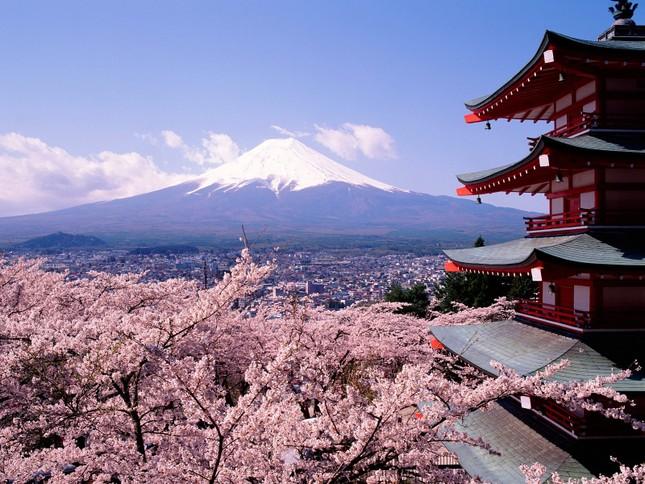Thí điểm dạy tiếng Nhật như ngoại ngữ thứ nhất ở tiểu học - ảnh 1