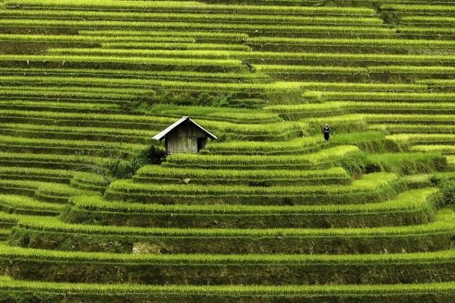 Việt Nam đẹp thanh bình qua ống kính nhiếp ảnh gia người Pháp - ảnh 3