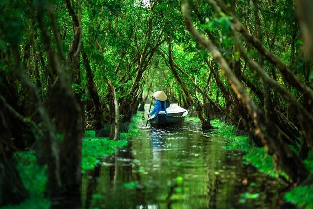 Việt Nam đẹp thanh bình qua ống kính nhiếp ảnh gia người Pháp - ảnh 11