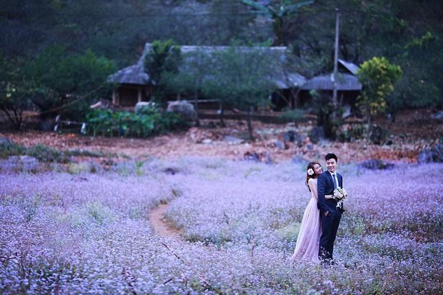 Những địa điểm chụp ảnh cưới đẹp mê đắm ở miền Bắc - ảnh 6
