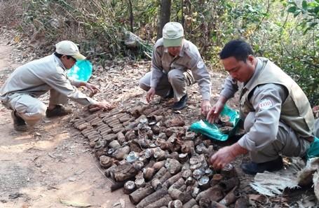 Người dân tá hỏa phát hiện hơn 1.000 quả đạn pháo trong bãi rác - ảnh 1